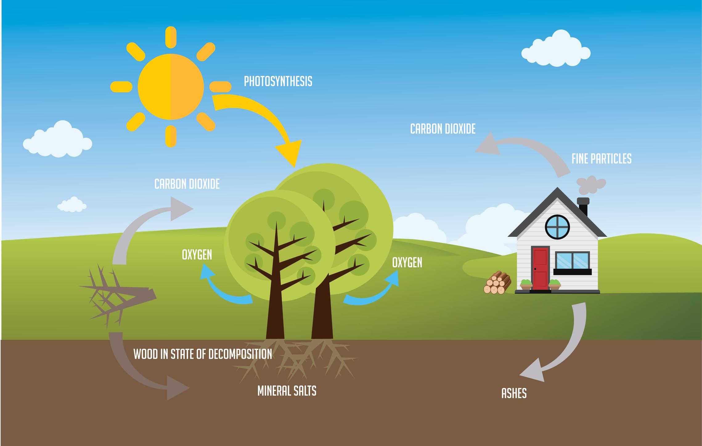 renewable-ecological-heating-energy-axis.png
